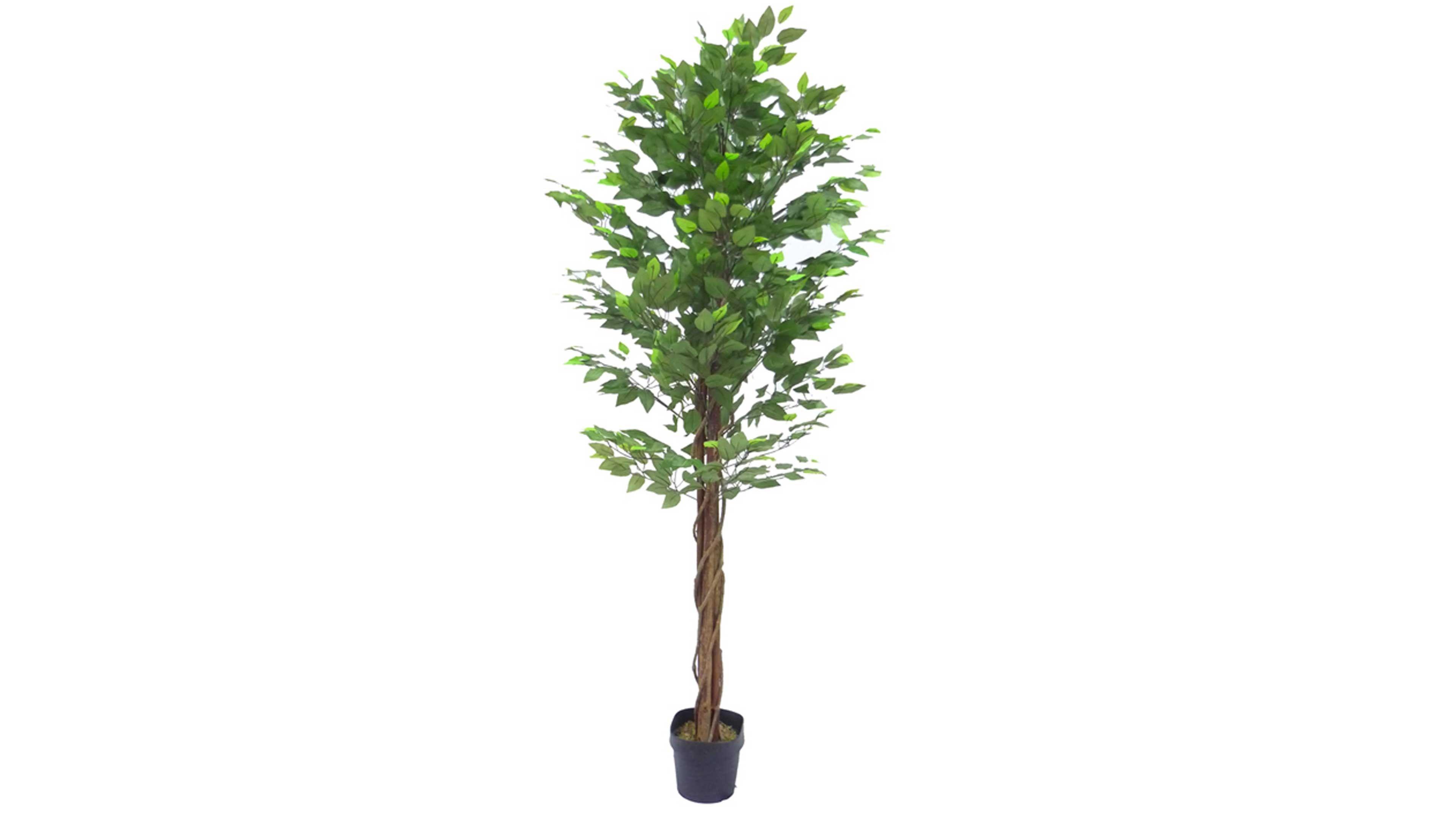 plante artificielle ficus 180cm
