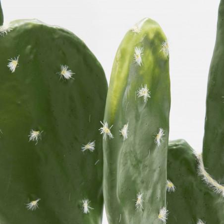 Focus plante artificielle cactus