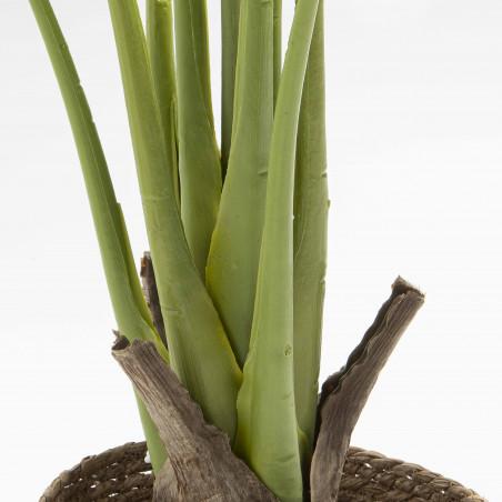 Focus plante artificielle monstera deliciosa