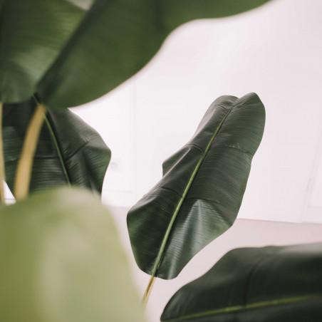 Focus plante artificielle bananier 180cm