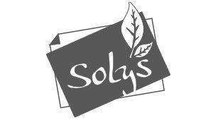 Logo SOLYS