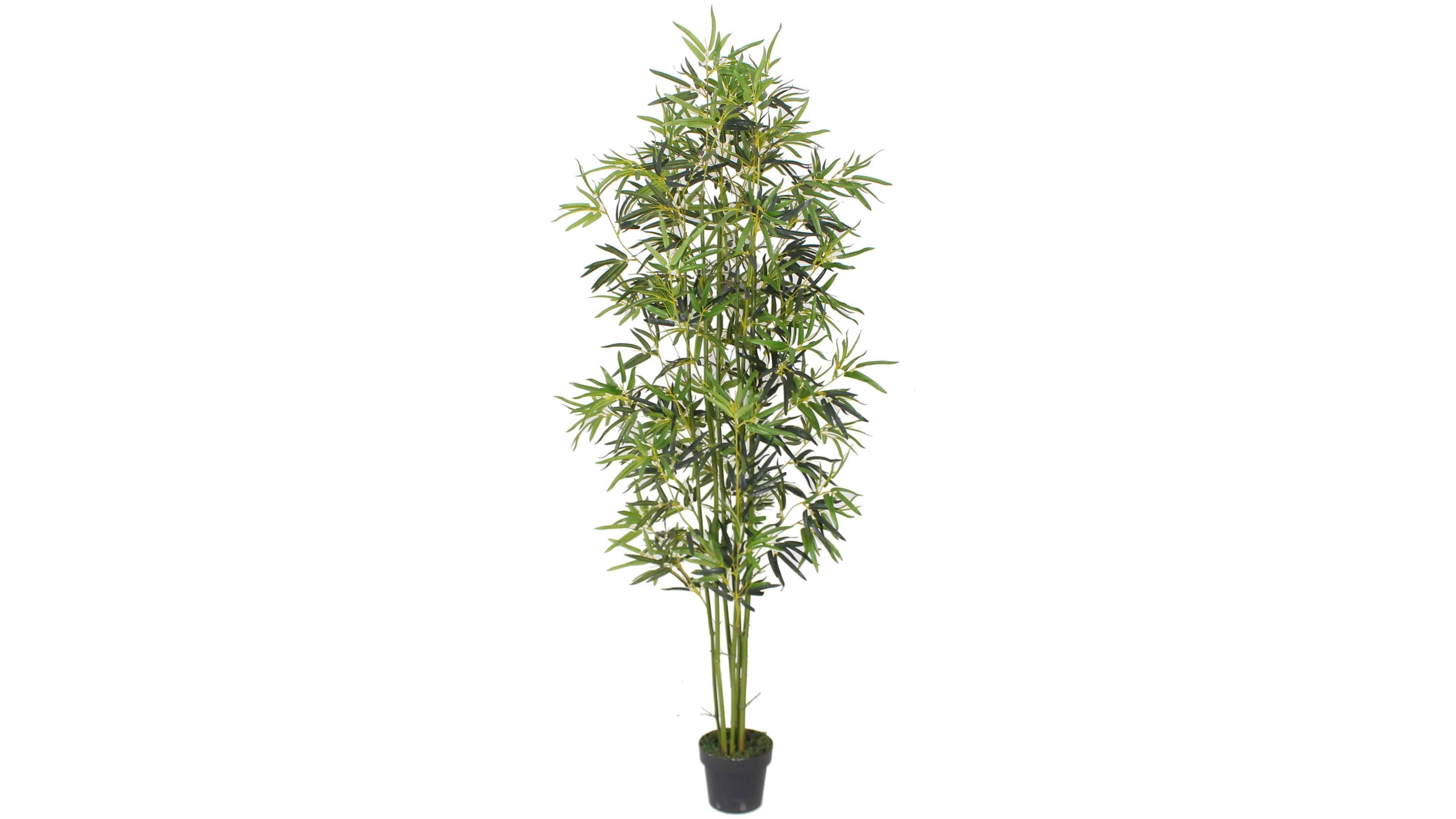 plante artificielle bambou