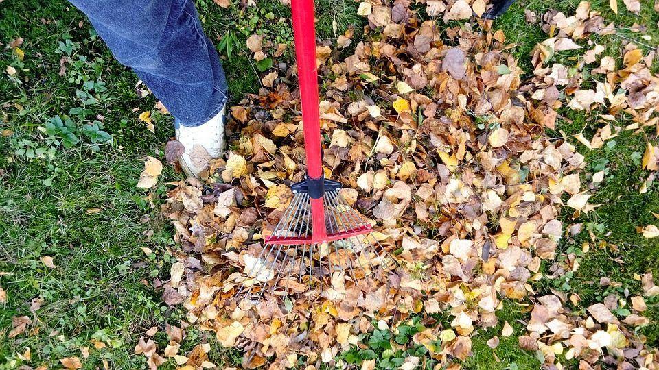 sac feuilles mortes lesto